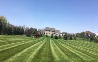 ground force lawn care