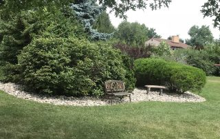 trees & shrubs with bench in landscaping